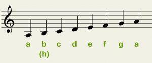 Noten lesen lernen anhand der Tonleiter